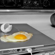egg-laptop