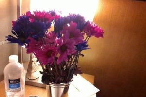 JENNIFERSTOY - WIN_20150730_232822